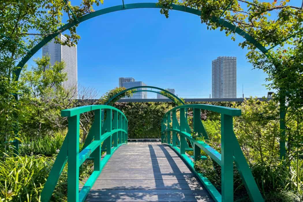 食と緑の空中庭園 睡蓮の庭4