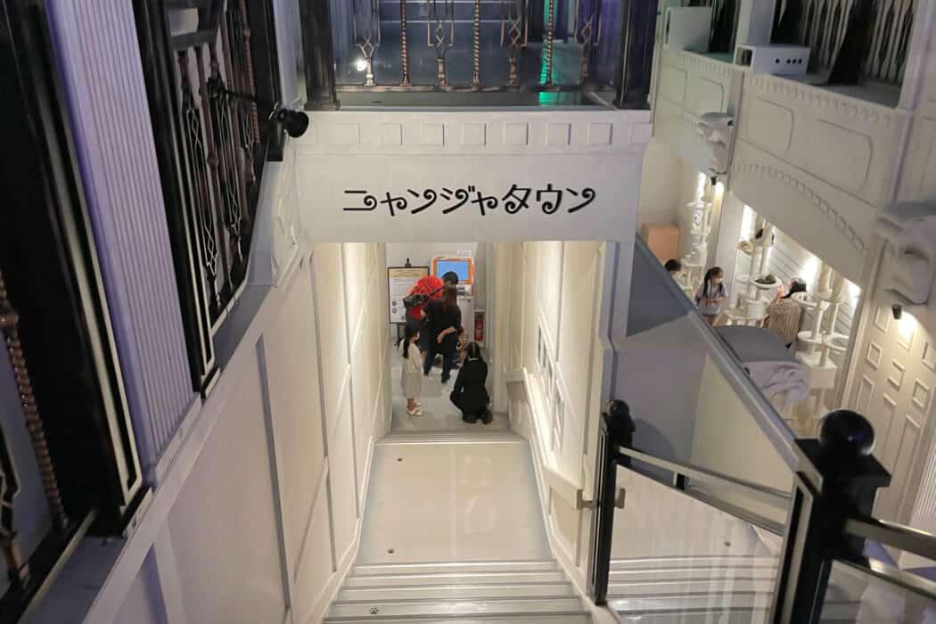 ニャンジャタウン 階段
